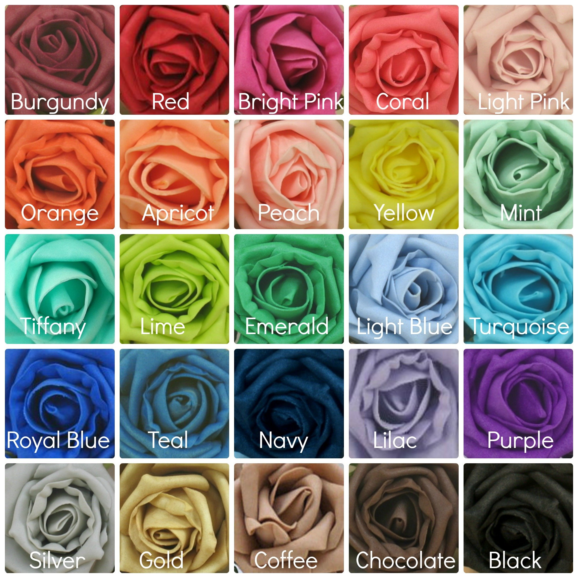 foam rose colours